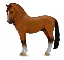 Campolina Stallion - Red Dun